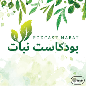 Podcast Nabat